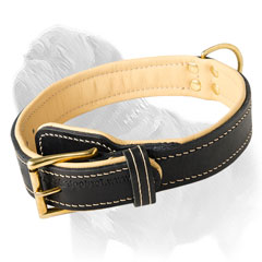 Nappa Leather Padded Mastiff Collar