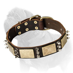 Leather Dog Collar with Spikes and Plates