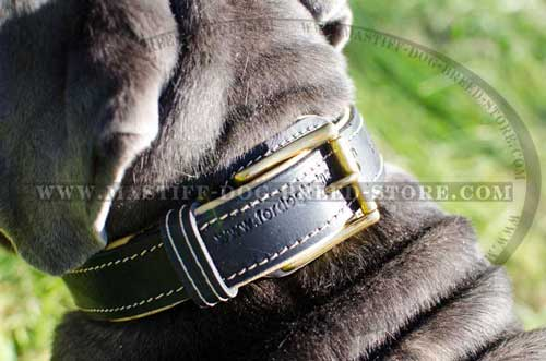 Durable Nappa Padded Leather Collar for Mastiffs