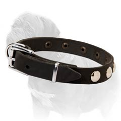 Walking Leather Collar for Mastiffs