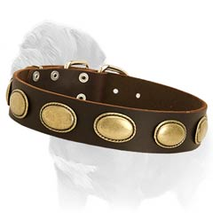 Genuine Leather Collar for Fashionable Walking