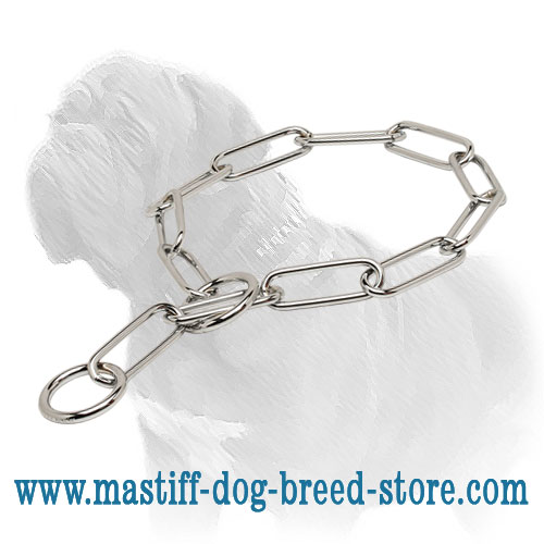 Mastiff metal collar of chromium plated steel