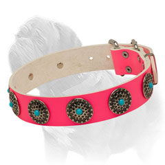 Smooth Pink Leather Collar for Walking Mastiffs