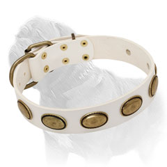 Mastiff White Leather Collar with Brass Ovals