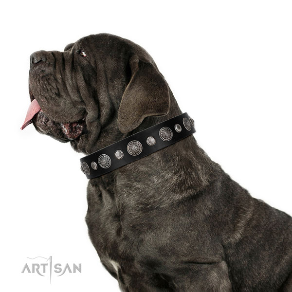 Full grain natural leather collar with reliable fittings for your impressive dog