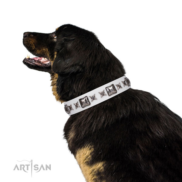 Inimitable decorated leather dog collar for fancy walking