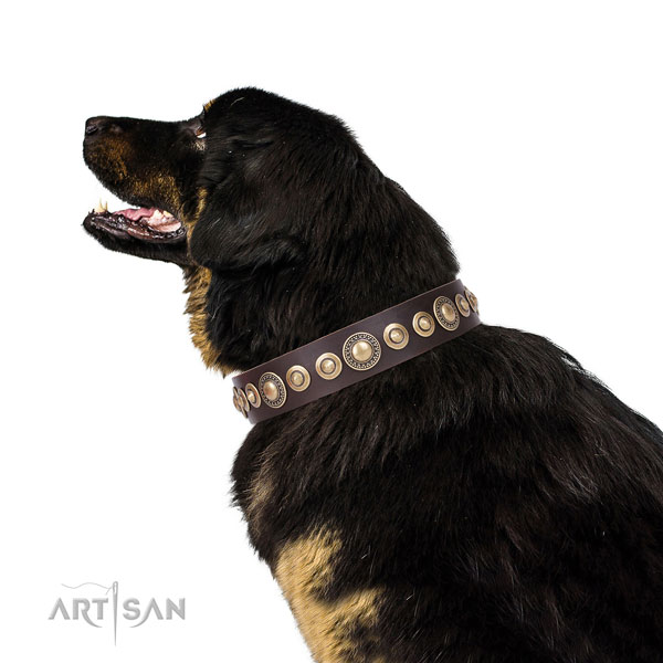 Exquisite embellished natural leather dog collar