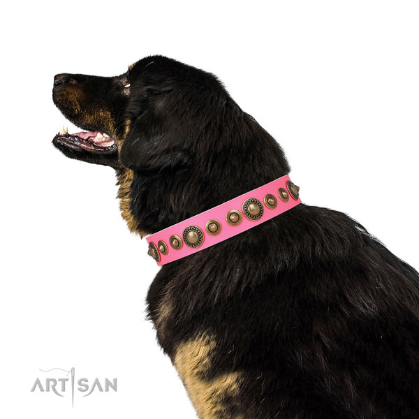 Corrosion resistant buckle and D-ring on natural leather dog collar for stylish walking
