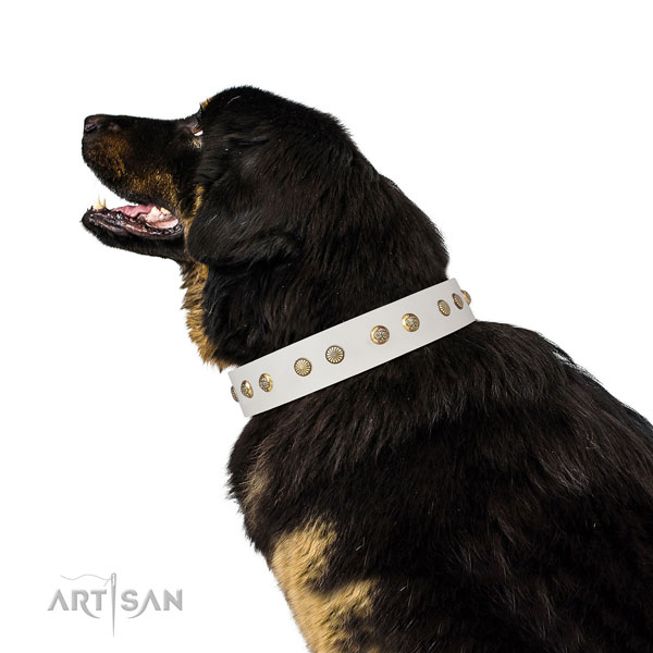 Exquisite embellishments on handy use genuine leather dog collar