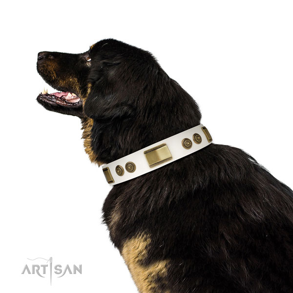 Top rate handy use dog collar of leather