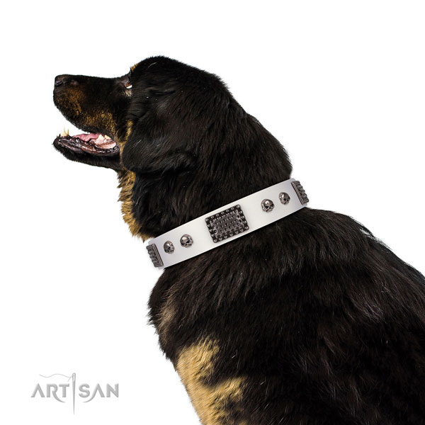 Easy wearing natural genuine leather collar for your impressive dog