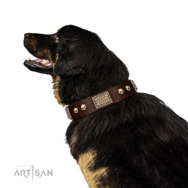 Corrosion resistant fittings on full grain leather dog collar for easy wearing