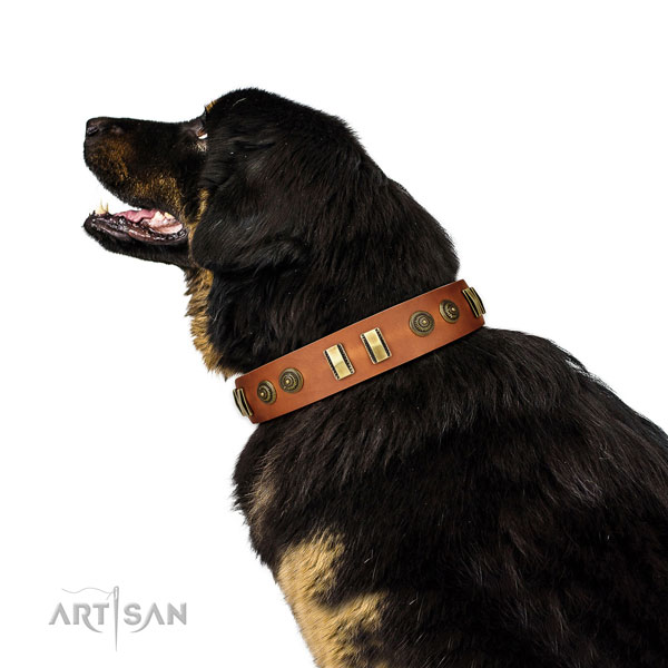 Corrosion resistant fittings on leather dog collar for handy use