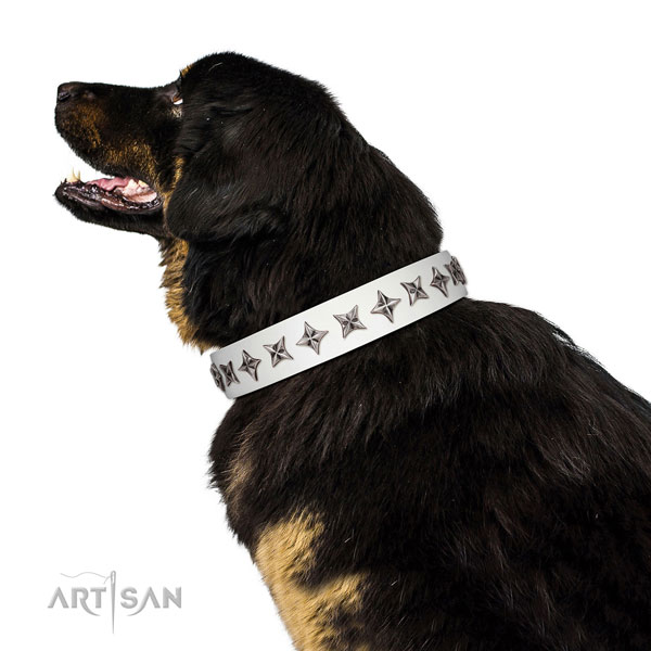 Reliable natural leather dog collar with designer embellishments