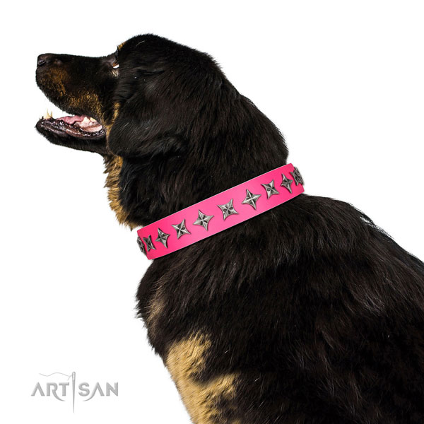 Reliable full grain natural leather dog collar with awesome studs