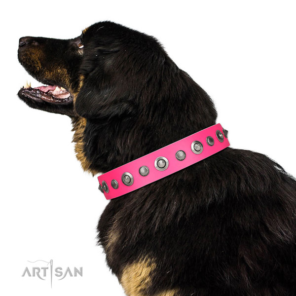 Leather collar with strong buckle for your stylish dog