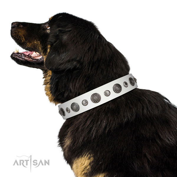 Adorned leather dog collar with corrosion proof traditional buckle