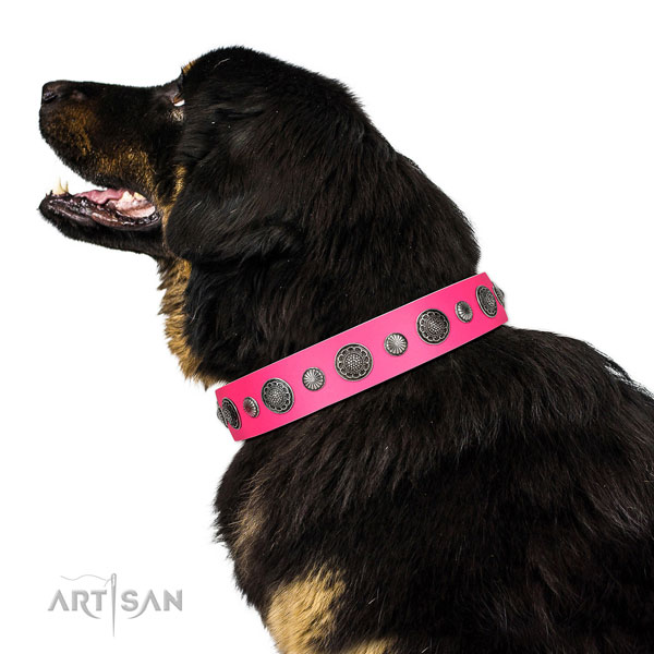 Easy to adjust leather dog collar with corrosion proof hardware