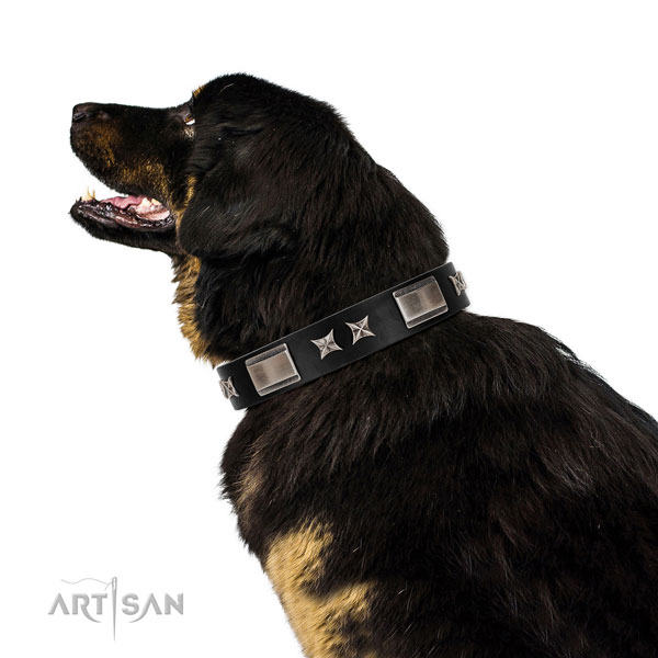 Walking reliable full grain natural leather dog collar with studs