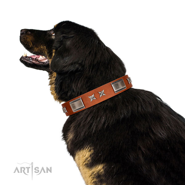 Comfy wearing top rate full grain natural leather dog collar with decorations