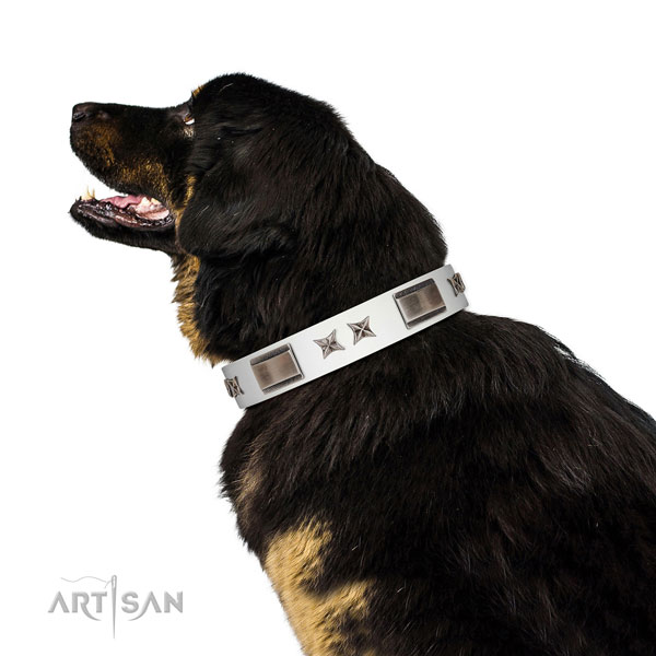 Comfortable wearing soft to touch genuine leather dog collar with decorations