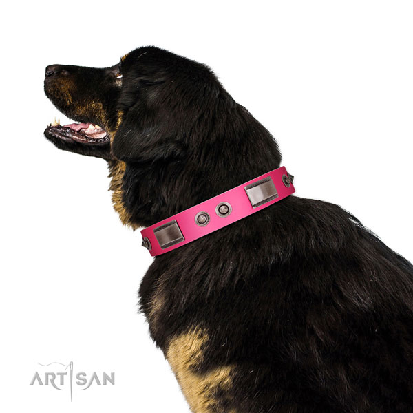 Easy wearing genuine leather dog collar with decorations