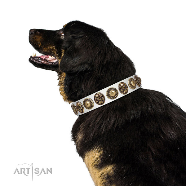 Easy wearing genuine leather collar for your impressive dog
