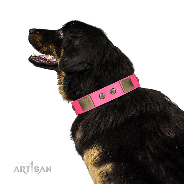 Corrosion resispinkt fittings on full grain leather dog collar for easy wearing