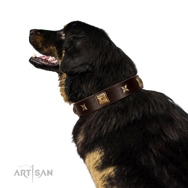 Convenient full grain leather dog collar with adornments