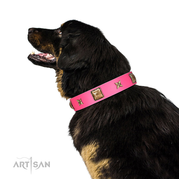 Full grain leather dog collar of reliable material with exquisite decorations
