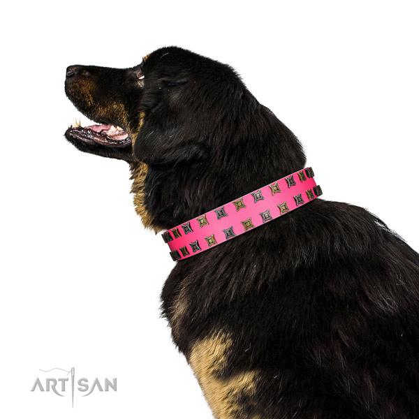 Soft full grain leather dog collar with embellishments for your canine
