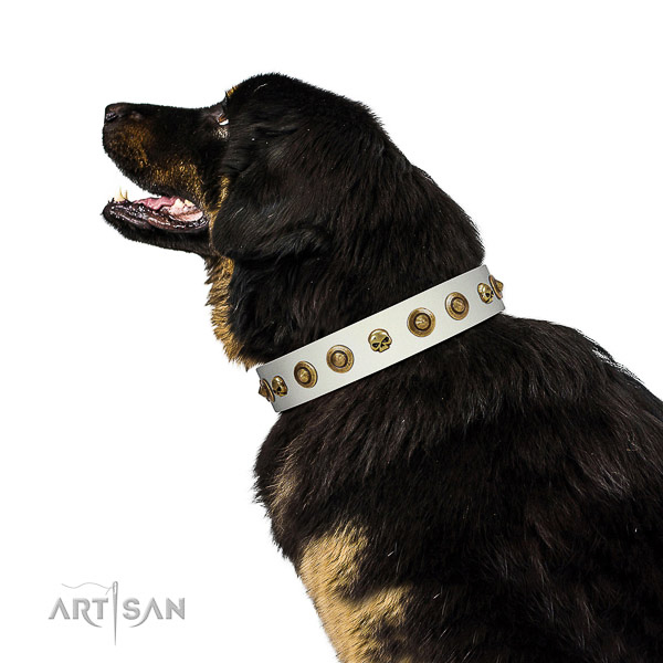 Soft to touch full grain genuine leather dog collar with studs for your pet