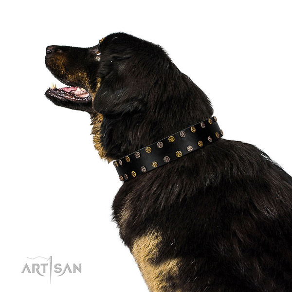 Trendy full grain genuine leather dog collar with strong embellishments