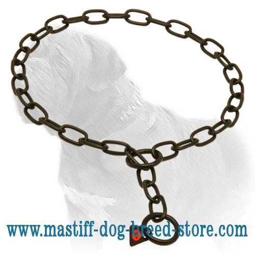 Stainless steel dog training collar
