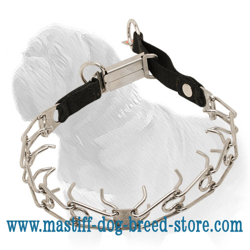 Dog prong collar for Mastiffs obedience training
