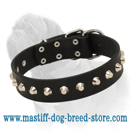 Dog collar of genuine leather with nickel-plated hardware