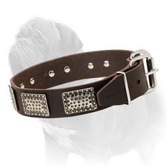 Mastiff dog collar made of carefully selected leather