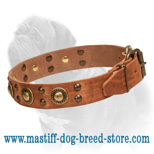 Leather collar, amazing design