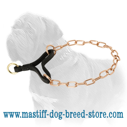 Curogan martingale collar with leather strap