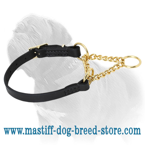 Martingale collar for obedience dog training