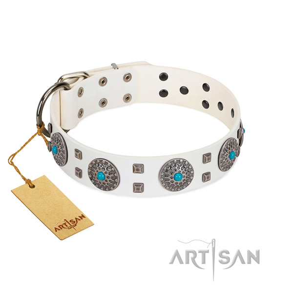 Fancy walking genuine leather dog collar with significant adornments