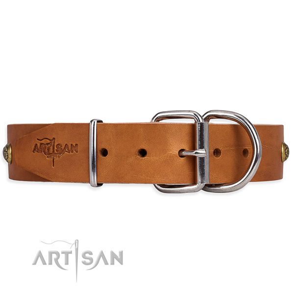 Full grain natural leather dog collar with designer reliable adornments