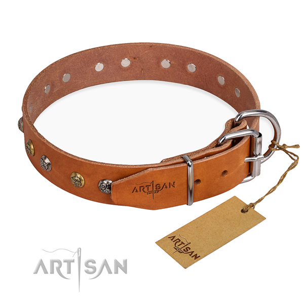 Full grain leather dog collar with unusual reliable adornments
