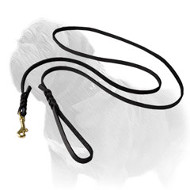 Long and Strong Mastiff Dog Leash for Shows
