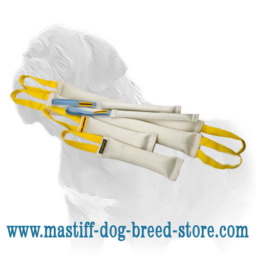 Mastiff fire hose tugs set