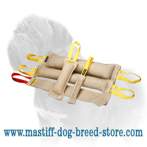4 jute bite tugs and FREE jute rag for Mastiff training