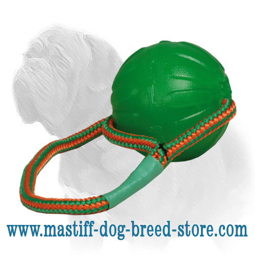 Mastiff dog chew ball with strong bright rope