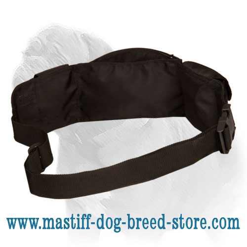 Dog training pouch with easy adjustable belt