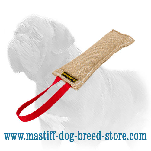 Pocket dog bite tug for training Mastiffs