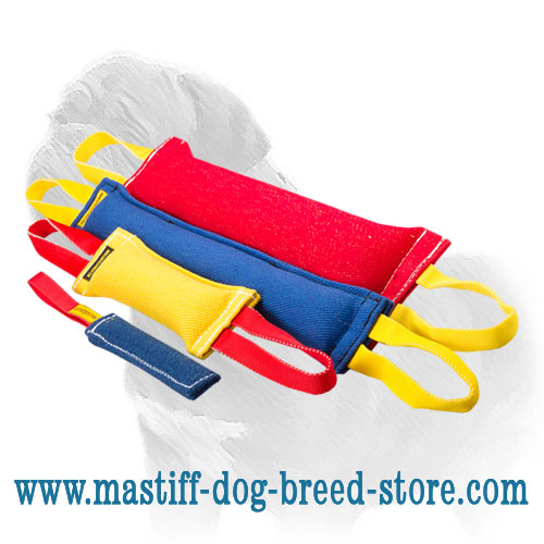 Mastiff dog training set: 3 bite tugs + 1 as a gift